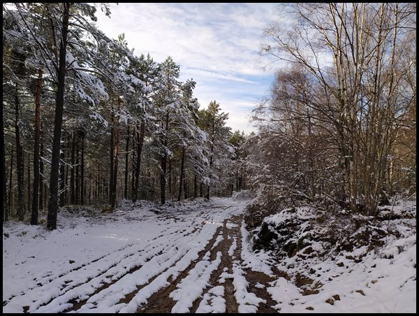 nieve y senderismo