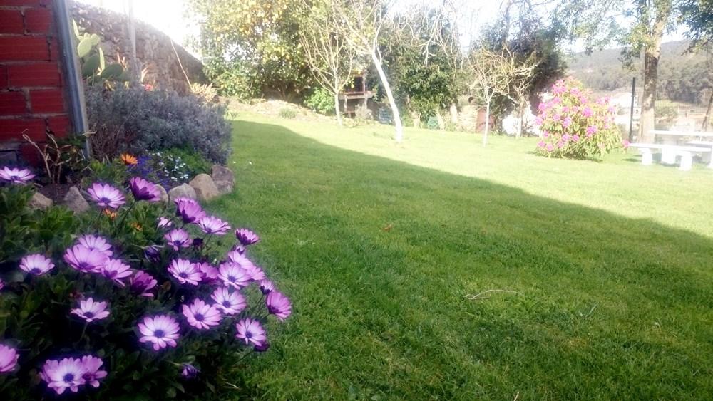 jardín de la casa espectacular